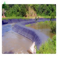 60 Mil HDPE Geomembrane liner